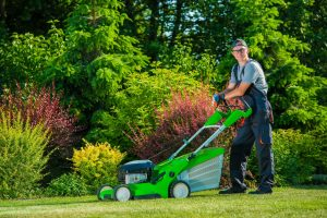 Lawn Care Tampa | SouthernGreenUSA.com