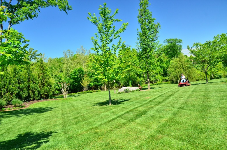 South Florida Lawn Care | SouthernGreenUSA.com